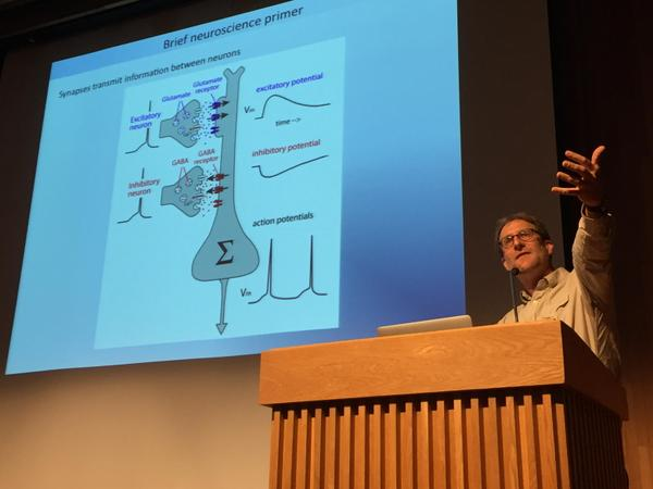 Dan Feldman provides a neuroscience primer at Cal Parents Weekend (photo by Jean Pommier)